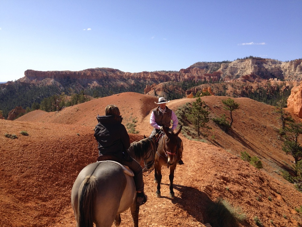 Bryce Canyon on Horseback