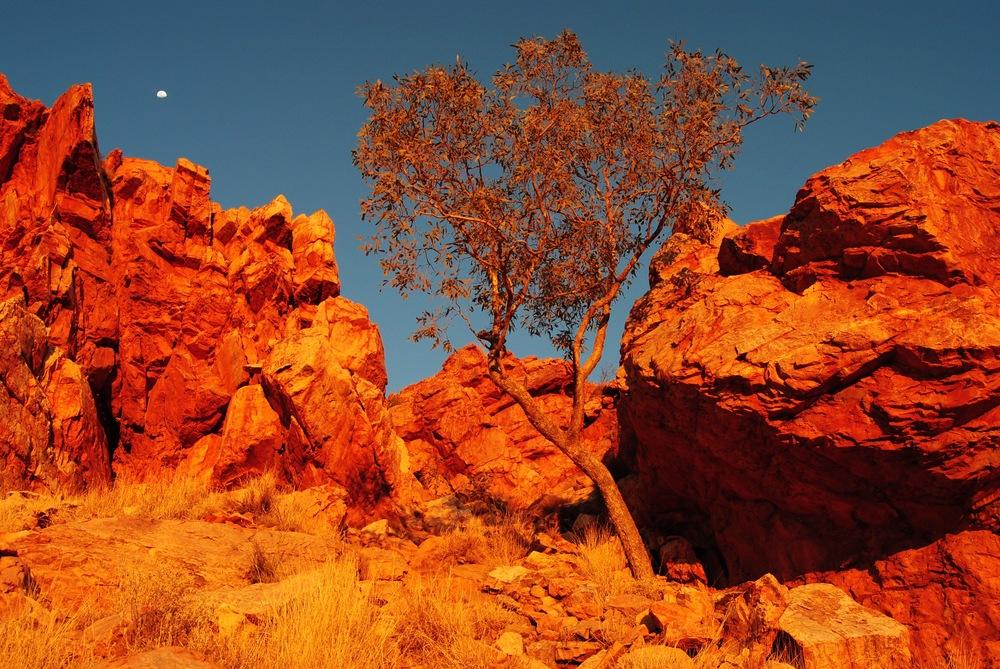 Mt Gillen Alice Springs