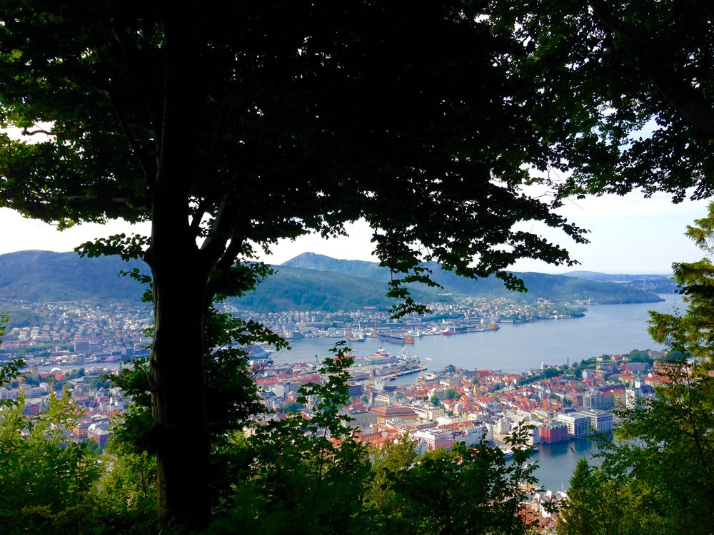 The view of Bergen from the top of Mt Floyen