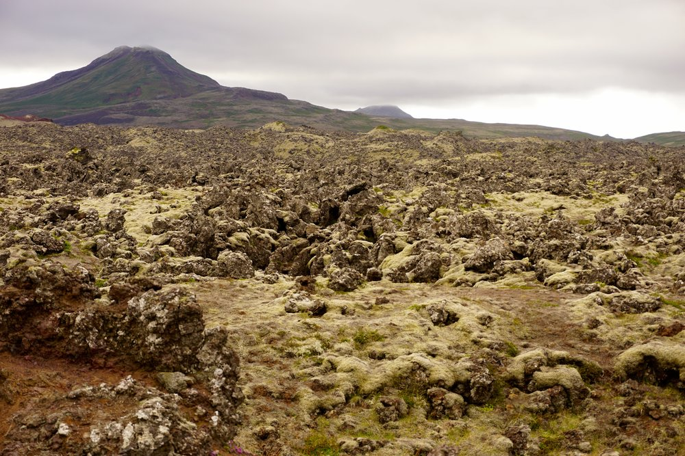 Lava Fields between Ararstapi and Hellnar