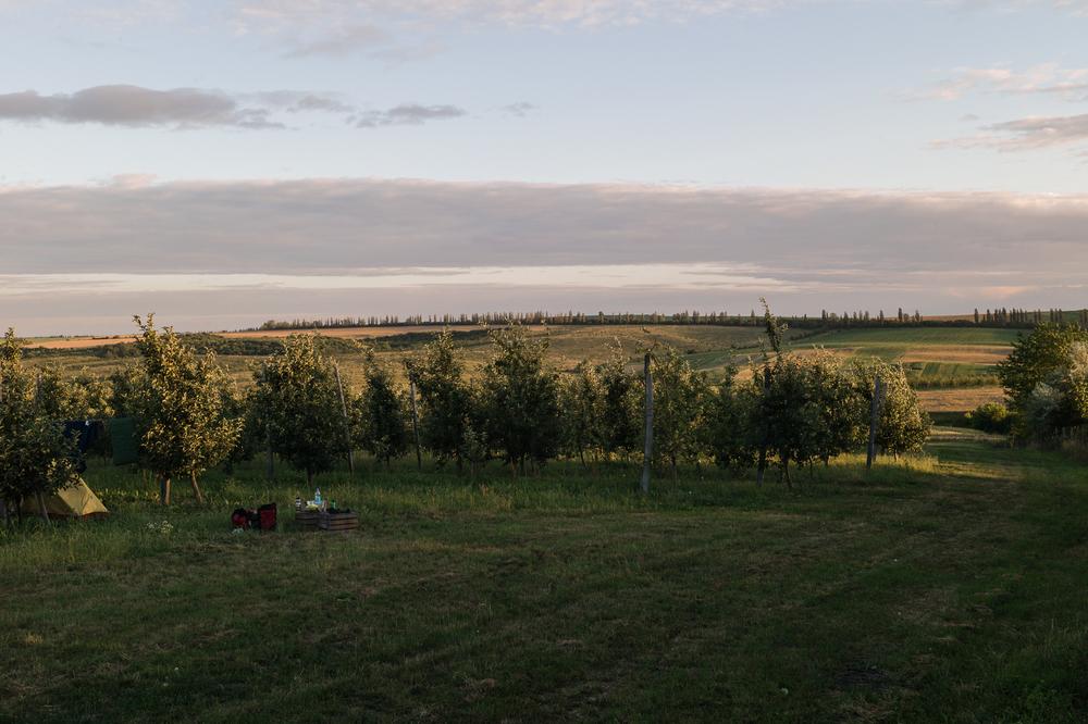 Close to Dankivtsi, July 7