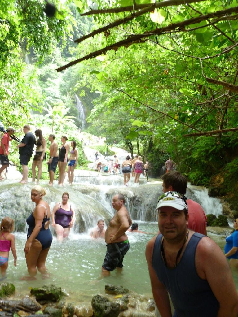 Vanuatu - Jungle falls