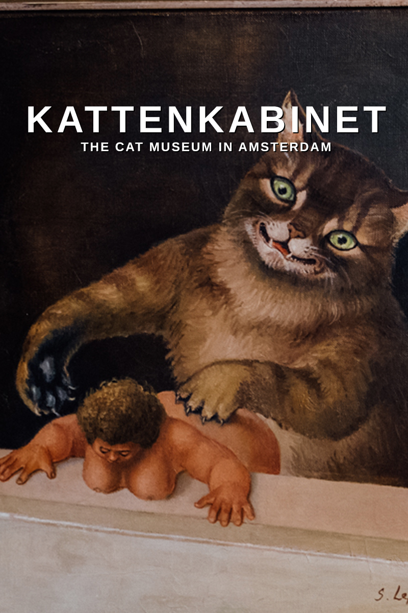 KattenKabinet, the cat museum in Amsterdam