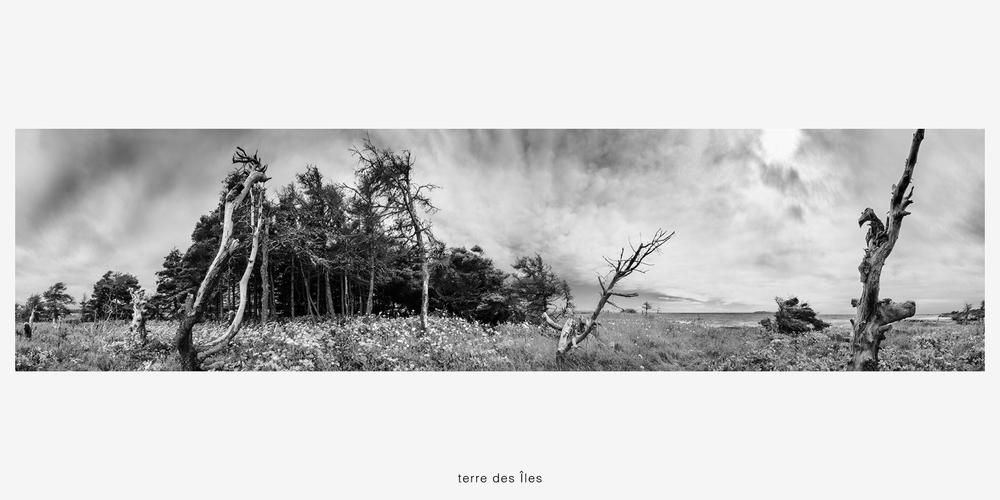 02_terre des îles © robin simard.jpg