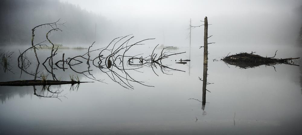 © Robin Simard Photographe. Titre: Le temps passe une seule fois. Parc-de-la-Mauricie Qc Canada