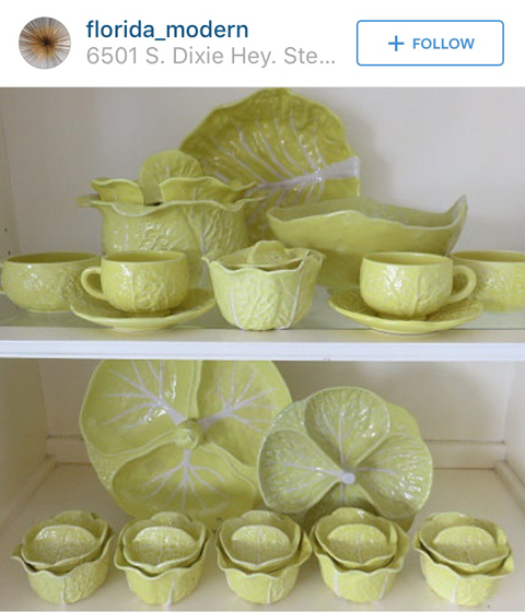 lettuce ware from florida _modern instagram