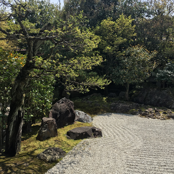 Zen garden Kyoto taken by Isla Simpson