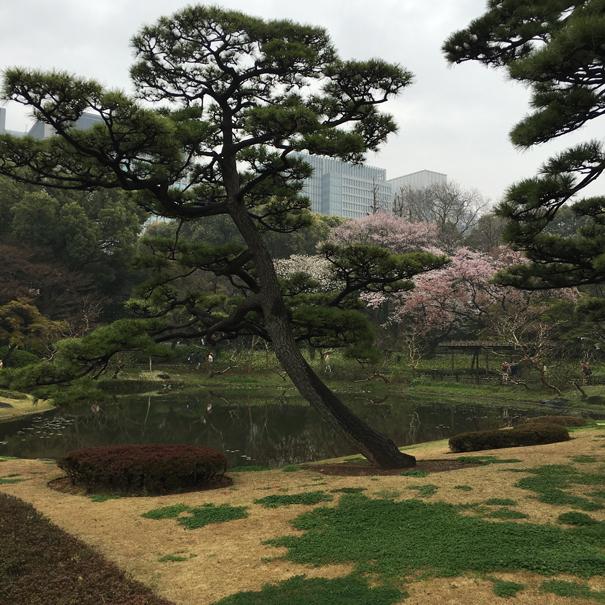 Gardens in Tokyo