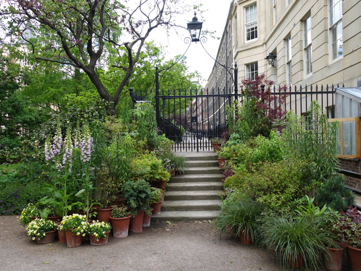 The Inner Temple garden taken by Isla Simpson