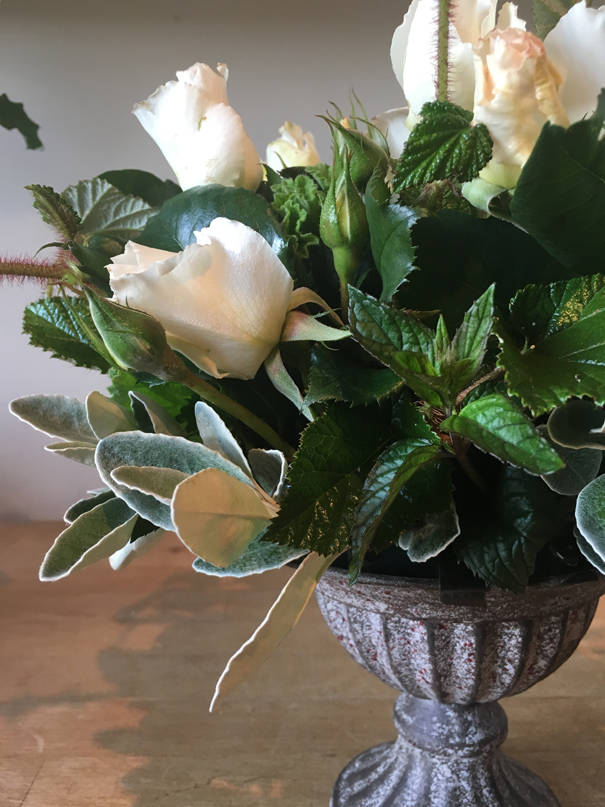 Margaret Merril roses by The Real Flower Company