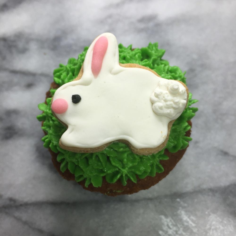 bunny pupcake.jpg