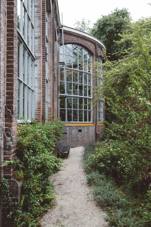 Wedding-Bethan-and-Mike-Hortus-Botanicus-photography-On-a-hazy-morning-Amsterdam215.jpg