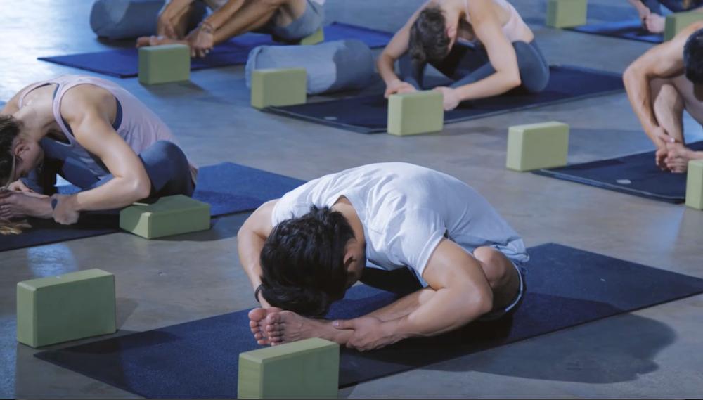 travis eliot ultimate yogi download