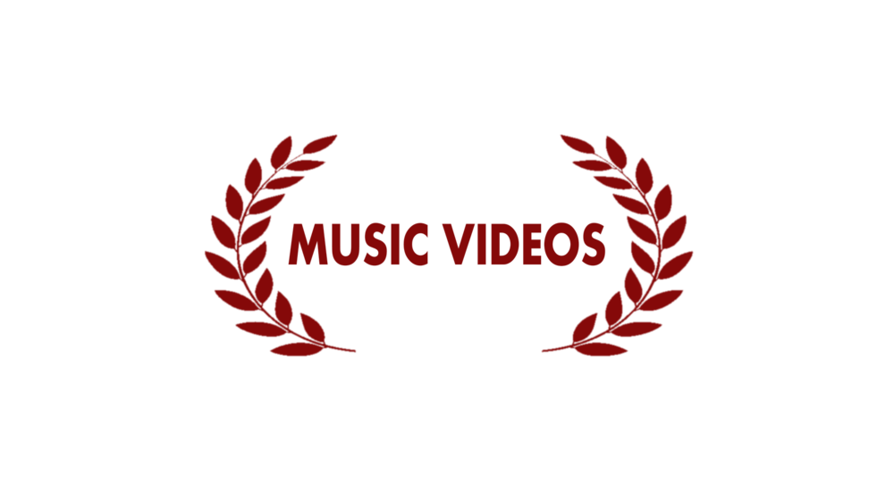 We make quality music videos based on your needs.