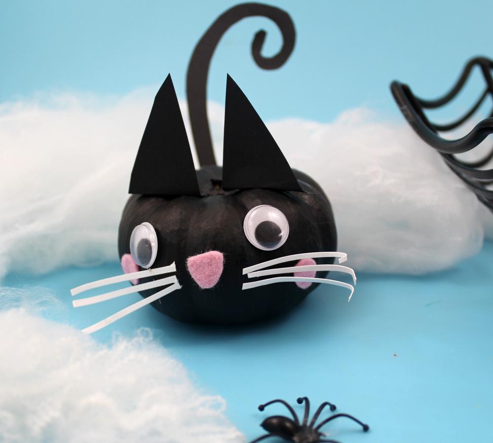 no carve cat pumpkin