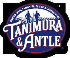 Tanimura & Antle.png