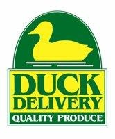 Duck Delivery Logo (JPEG).jpg