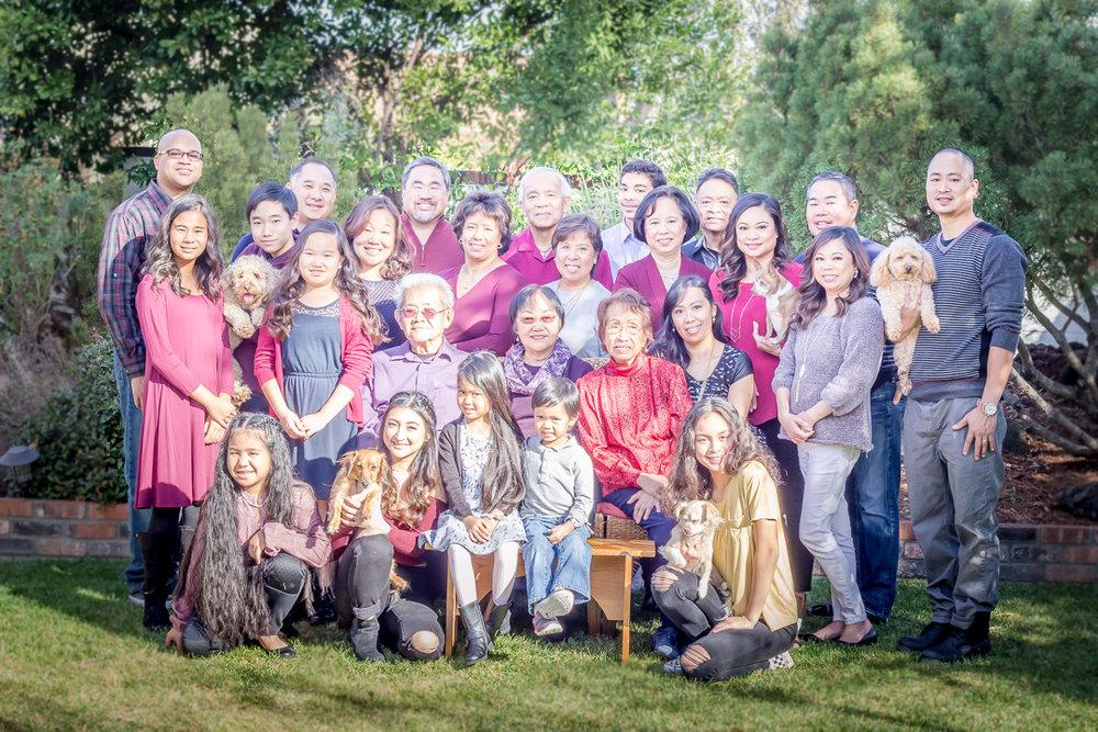 Large outdoor family portrait