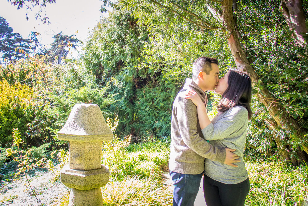 san francisco botanical gardens engagement photo