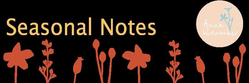 Quarterly Newsletter, Website Restructure - annawiscombe.com