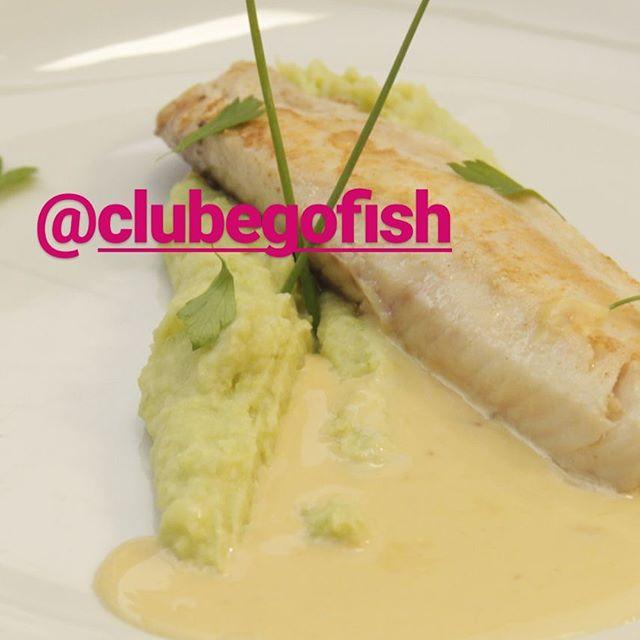 E esse prato maravilhoso?!!😱😳 Tilápia grelhada ao molho de laranja com purê de aspargos... 😋 Receita do chef @paganiniandre  que está no nosso blog medium.com/@clubegofish. 📷@enquadrafotografias  #vidasaudavel #leve #boaforma #peixe #tilapiaemBH #comidaboa #comidadeverdade #instafood #gofish #clube #aspargos