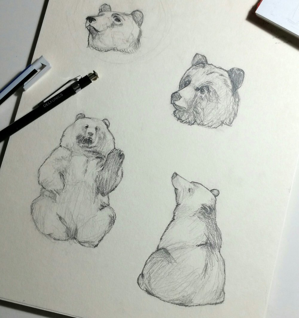 Drawing some bears.