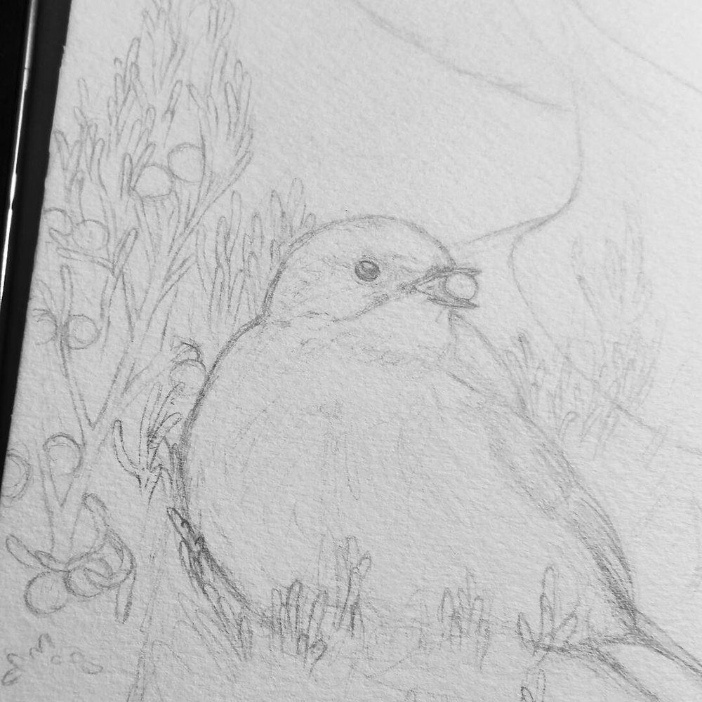 Detail of a new piece I'm working on with Junipers berries.