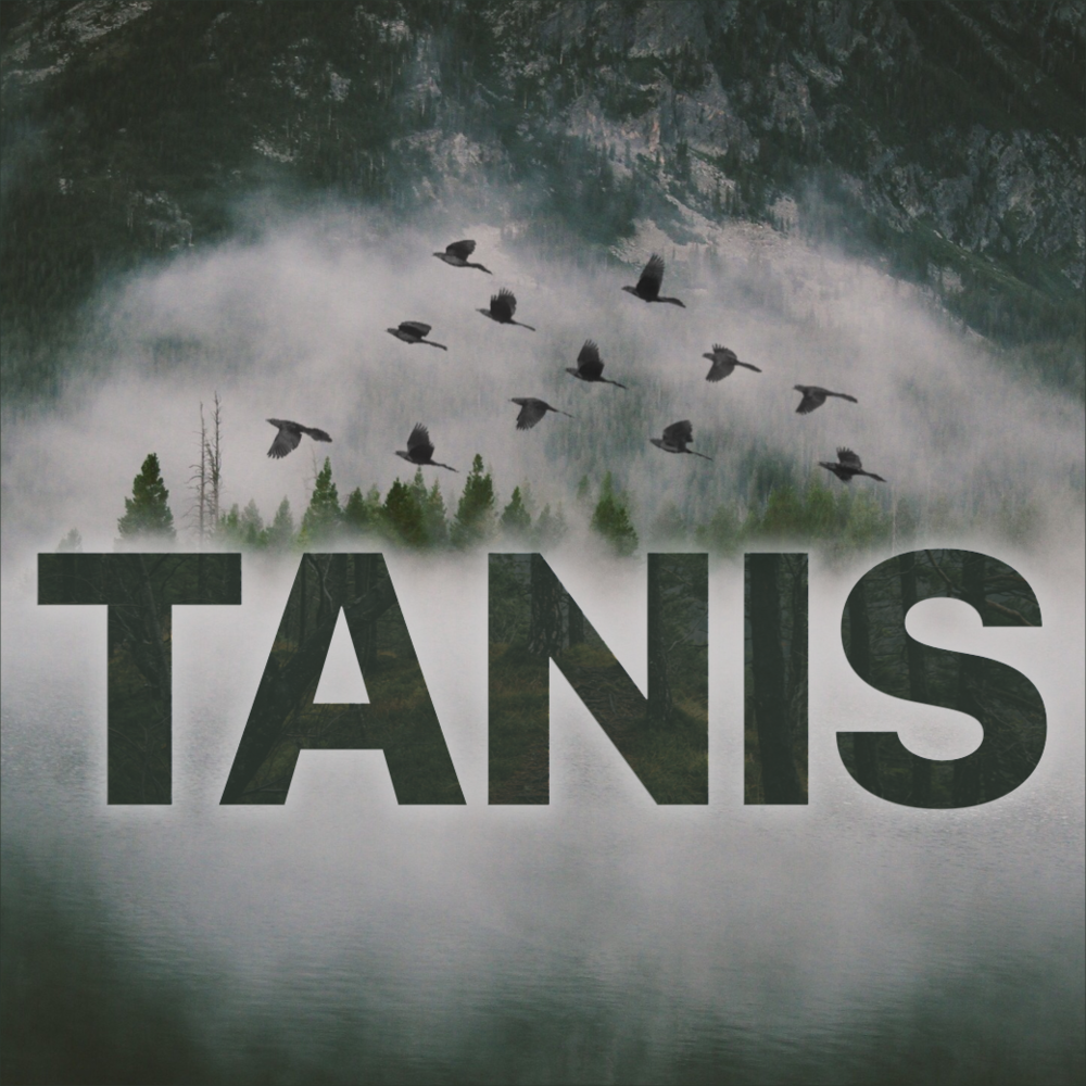 "Tanis ""grackles over logo"" art by Ryan Vandeput."