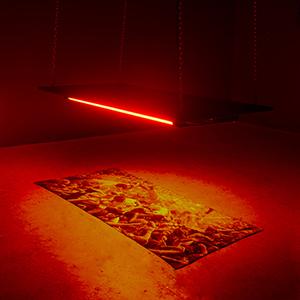 Q&A: Jordan Rockford, Curator