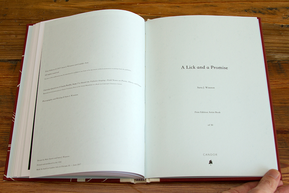 Text spread from  A Lick and a Promise , published with Candor Arts, Chicago, IL, 2017