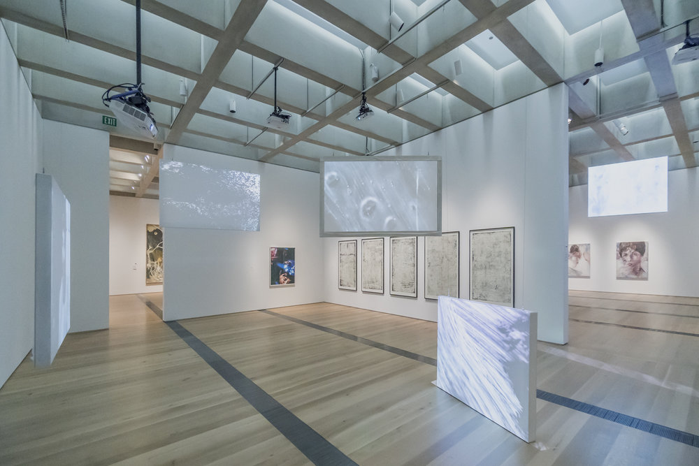 Currents 114: Matt Saunders ,Image courtesy Saint Louis Art Museum, Photography by Tony Carosella