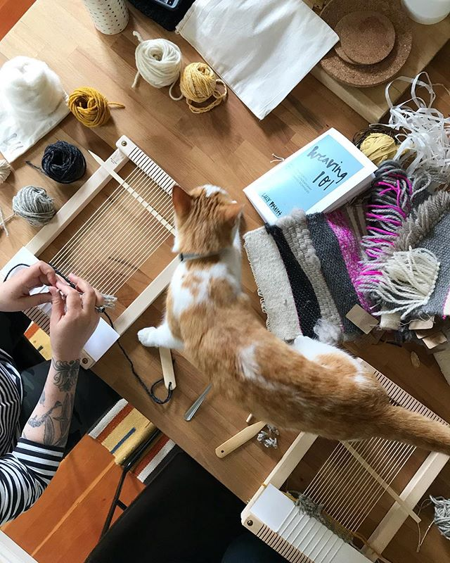 I had the hilarious and talented @eszterburghardt at my kitchen table for a lil 1-on-1 Weaving 1-oh-1 yesterday. So nice to get back in the swing of things with such lovely company, even better when they tolerate your nosy cats!