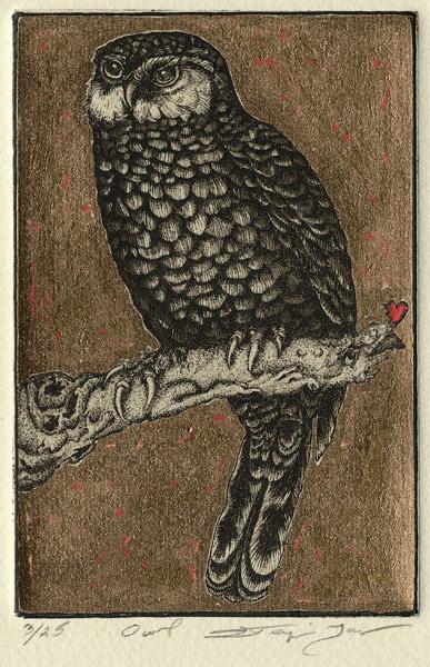 Owl.jpg  285.jpg
