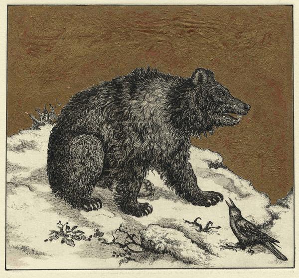 bear_big.jpg 325.jpg