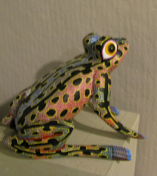 frog_big.jpg 60.jpg