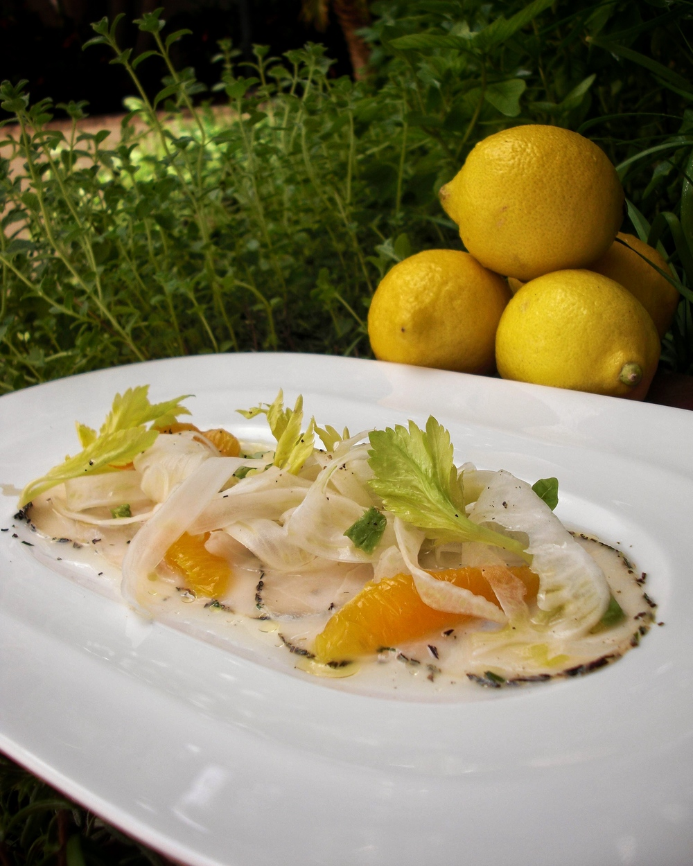 Italian Swordfish Crudo - Recipe by Chef Michael Finizia