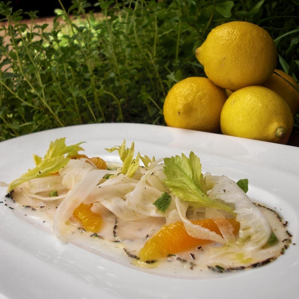 Italian Swordfish Crudo By Chef Michael Finizia