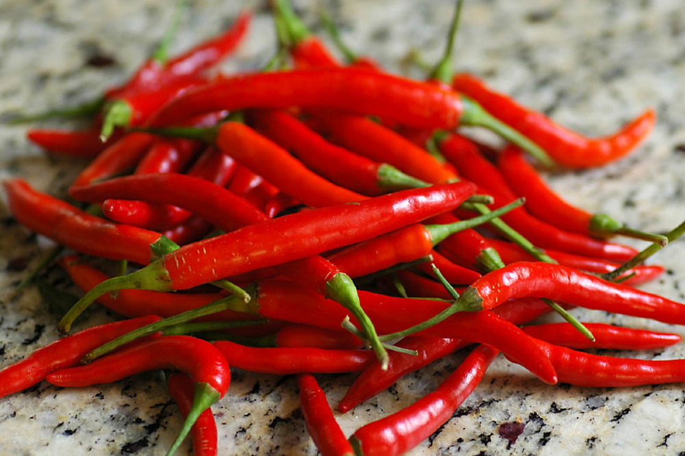 Thai Red Chilis