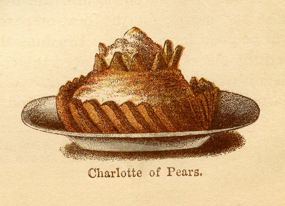 A 19th Century illustration of a Charlotte