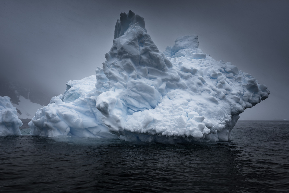 """Misty Ears"", Antarctica"