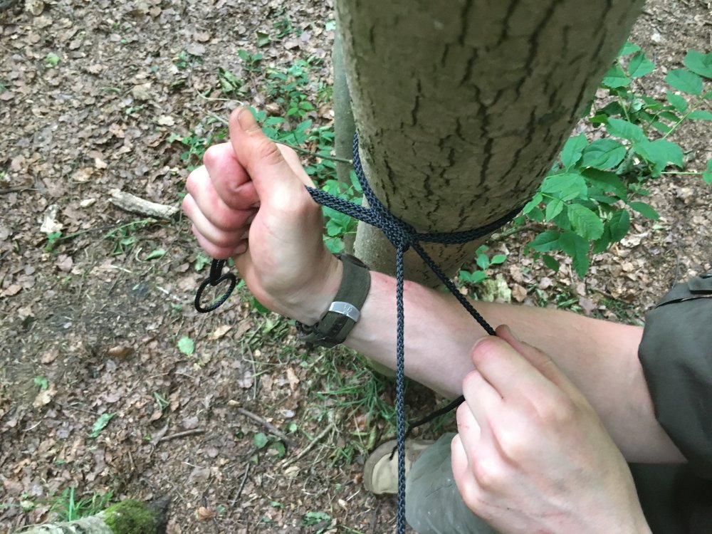 Durable Cord - For tarps and bushcraft