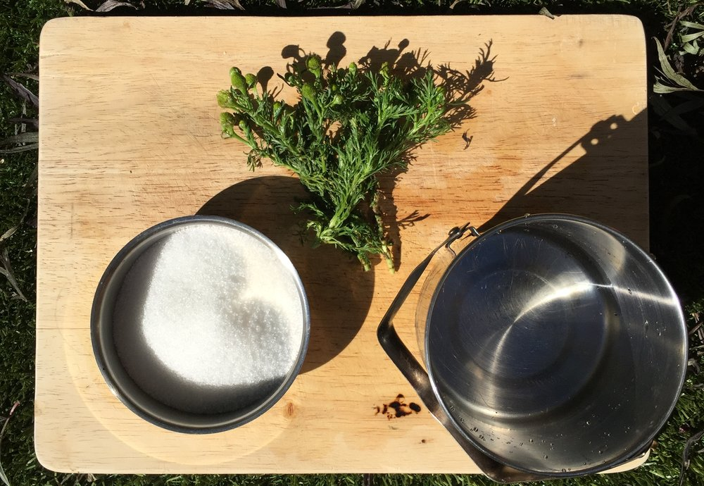 pineapple weed syrup