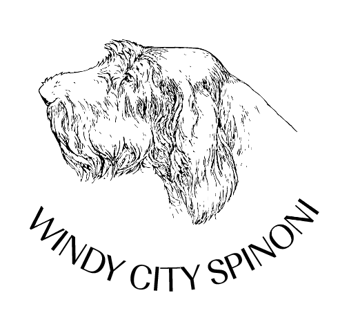 Windy City Spinoni