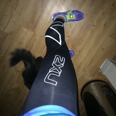 160f86a0be These tights are thick enough that they will keep you warm on a 20 degree  run but thin enough that they will wick moisture and feel fairly  lightweight.