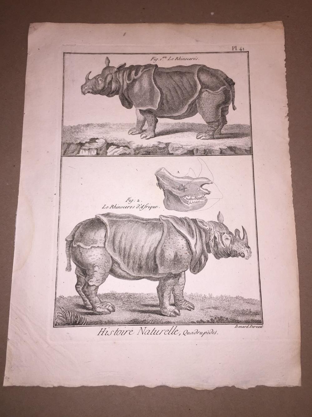 Pierre Joseph Bonnaterre (French Naturalist, 1752-1804)