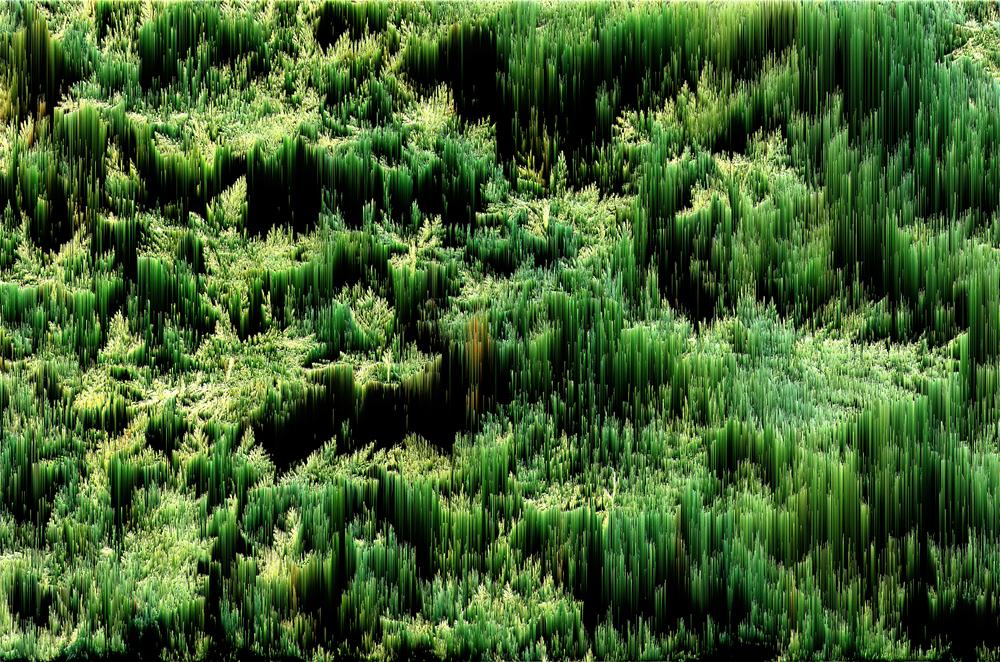 alban_guerry-suire_pixel_sorting-008.jpg