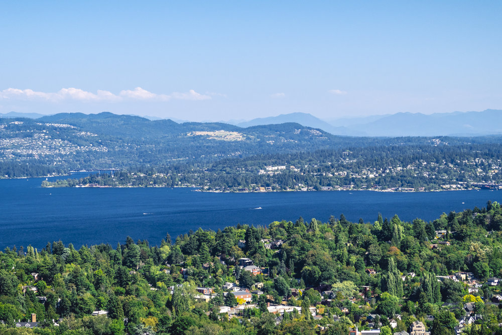 Evergreen_State_Lake_Washington_Summer_Aerial.jpg