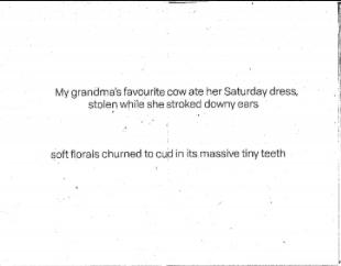 Megan Gnanasihamany  ,  Farmgirl   (Page 2), Zine, 2016.
