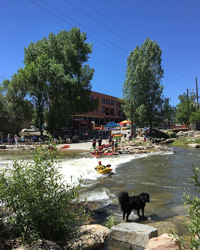And it's Puck's first #FIBArk too! 🏄🏽🚣🏻🌊🍻 #salidacolorado #riverdog
