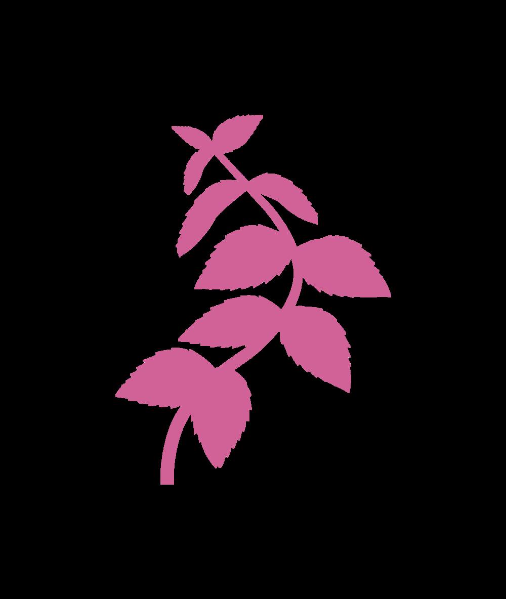 logo (57).png